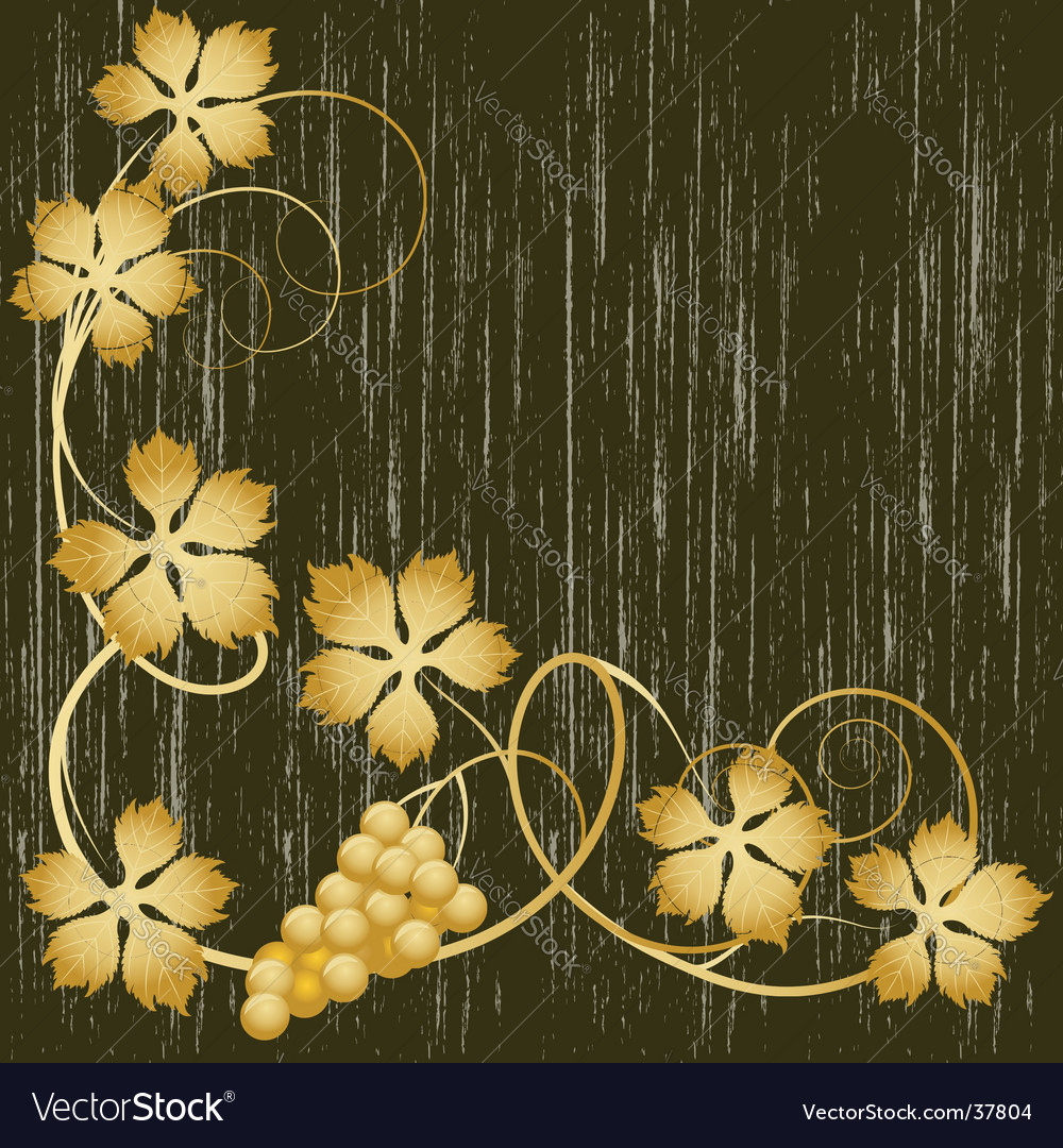 Gold grapevine vector image