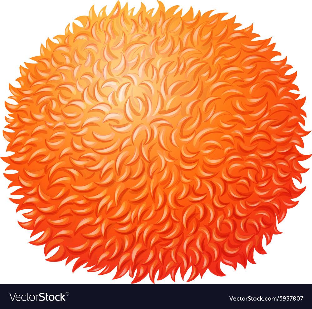 Orange fluffy ball on white vector image