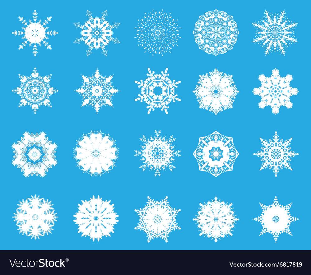 Set of twent snowflakes vector image