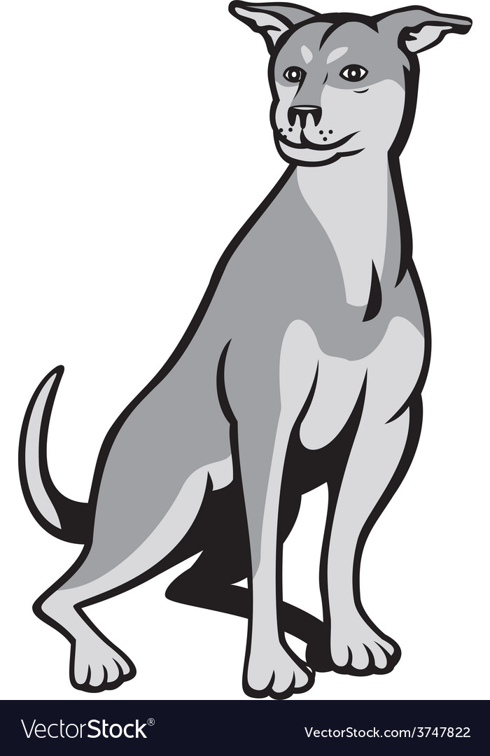 Husky Shar Pei Cross Dog Sitting Cartoon vector image