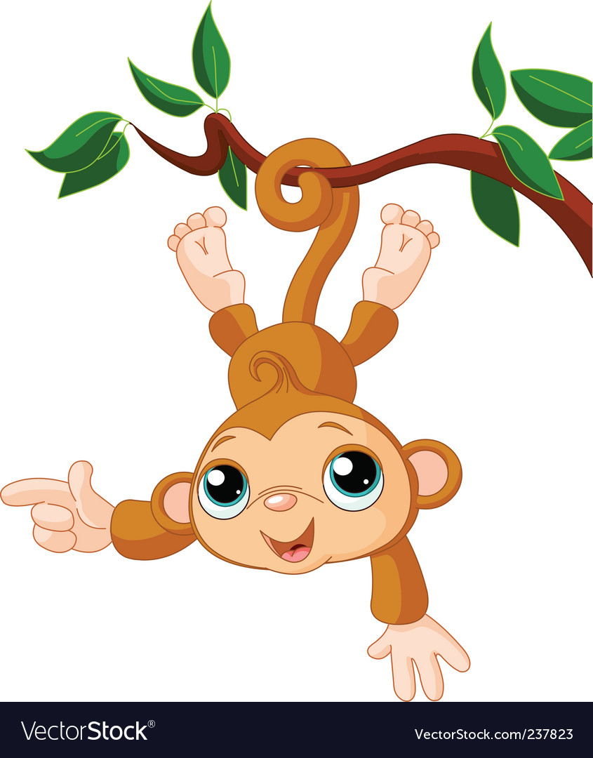 Baby Monkey On A Tree Showing Vector. Artist: Dazdraperma; File type: Vector