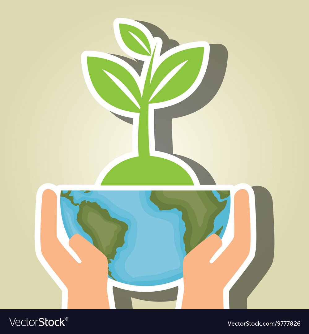 Plant and tree isolated icon design vector image