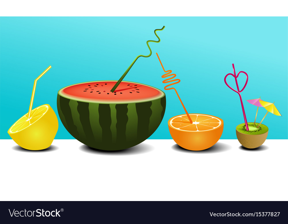 Summer fruit juice vector image