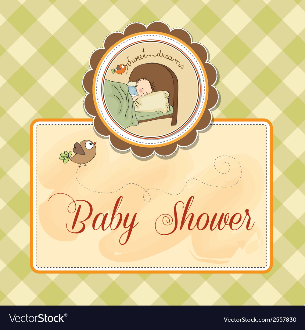 New baby boy arrived vector image