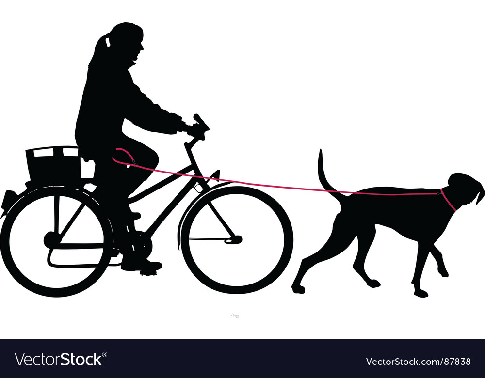 Woman on bicycle with dog vector image
