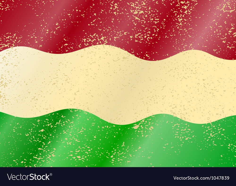 Hungarian grunge flag vector image
