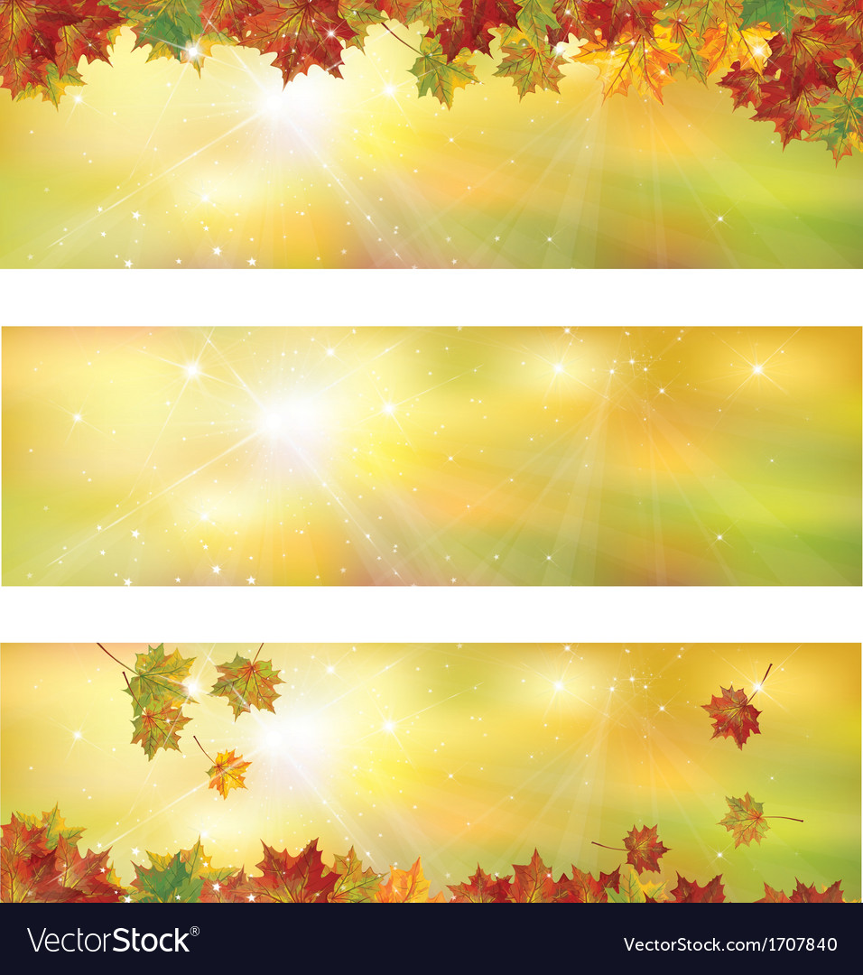 Fall vector image
