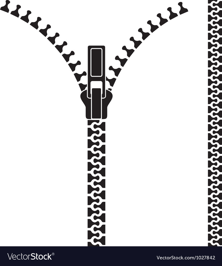 Open zipper vector image