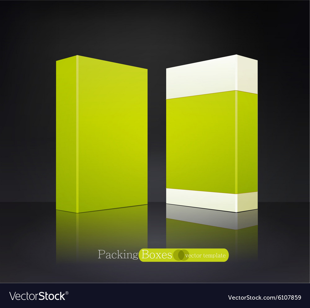 Template green box isolated vector image