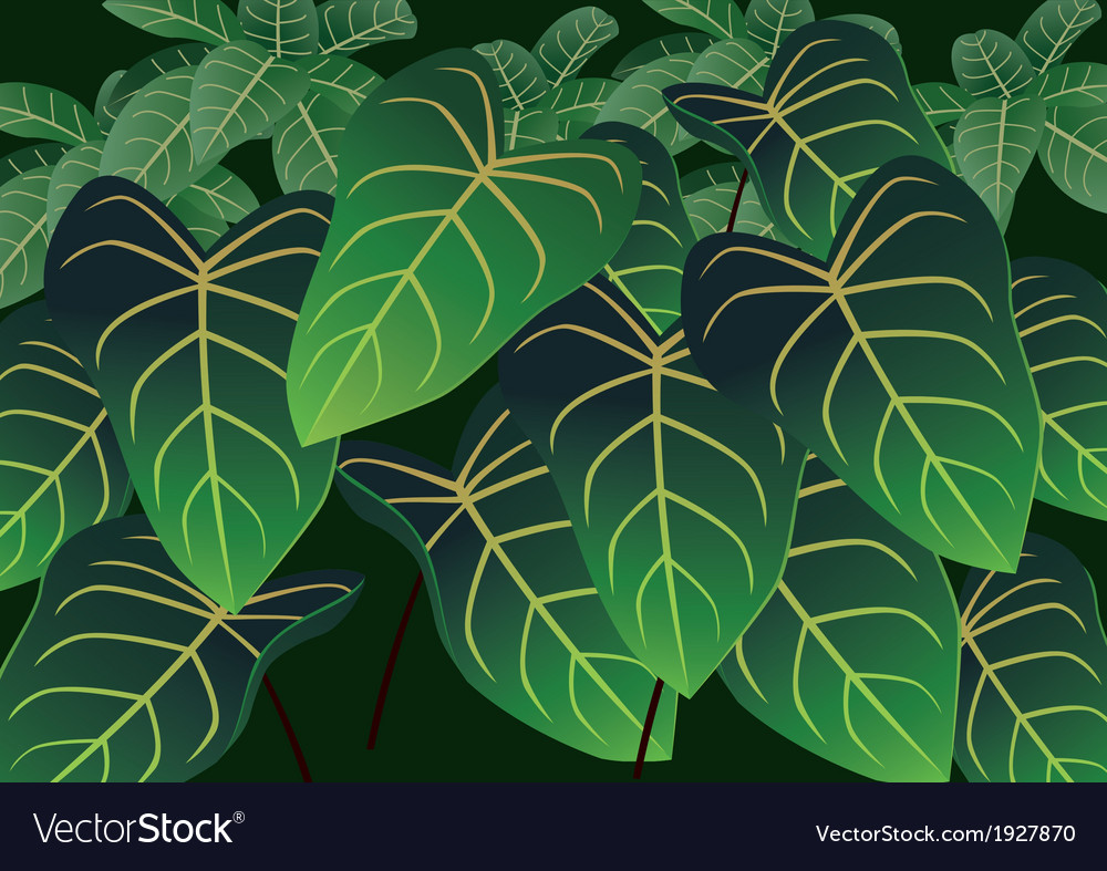 Leafs Background vector image