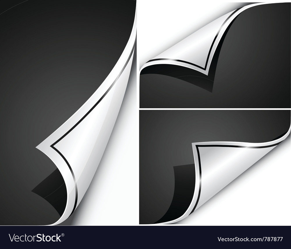 Page flip s vector image