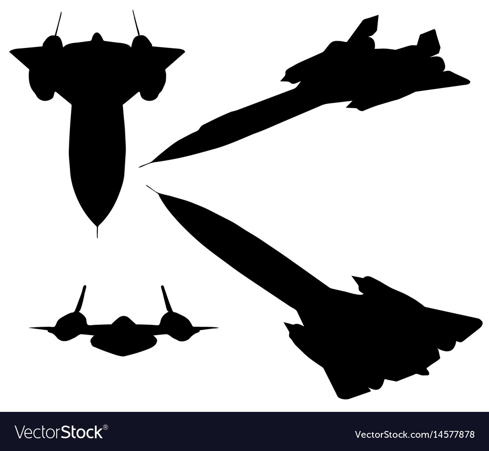 Blackbird on white background vector image
