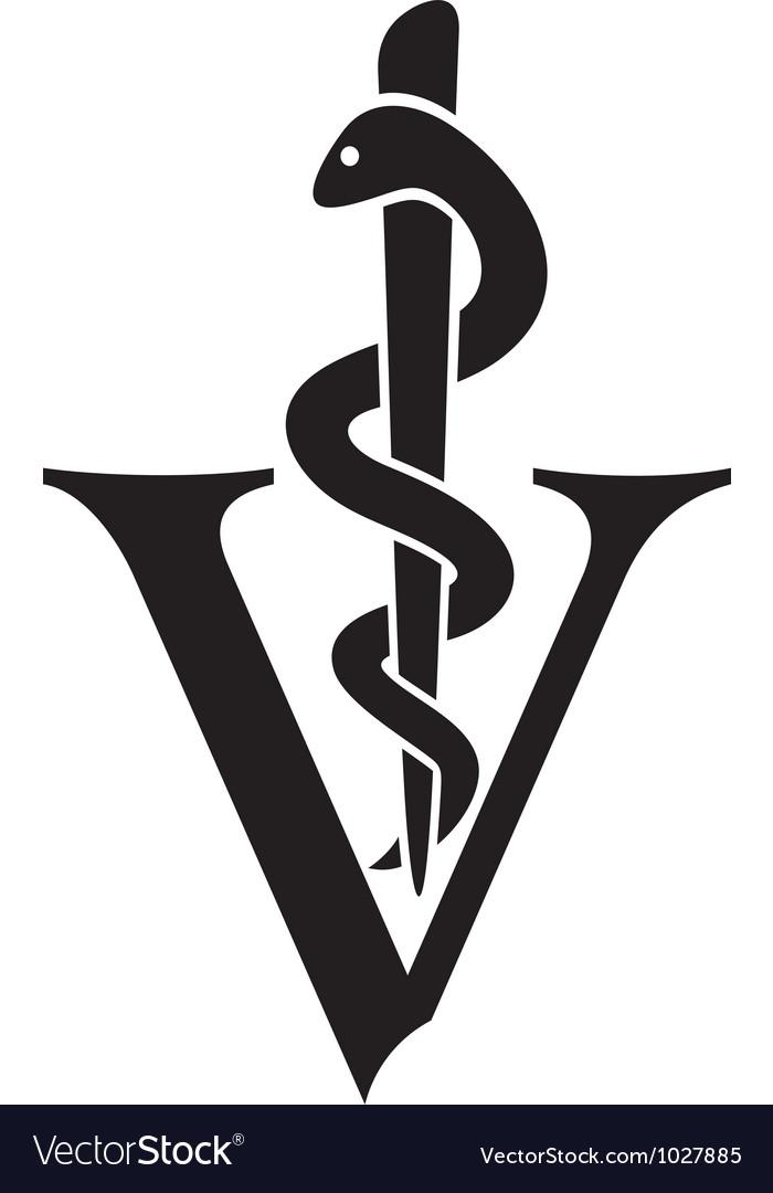 Veterinary symbol vector image