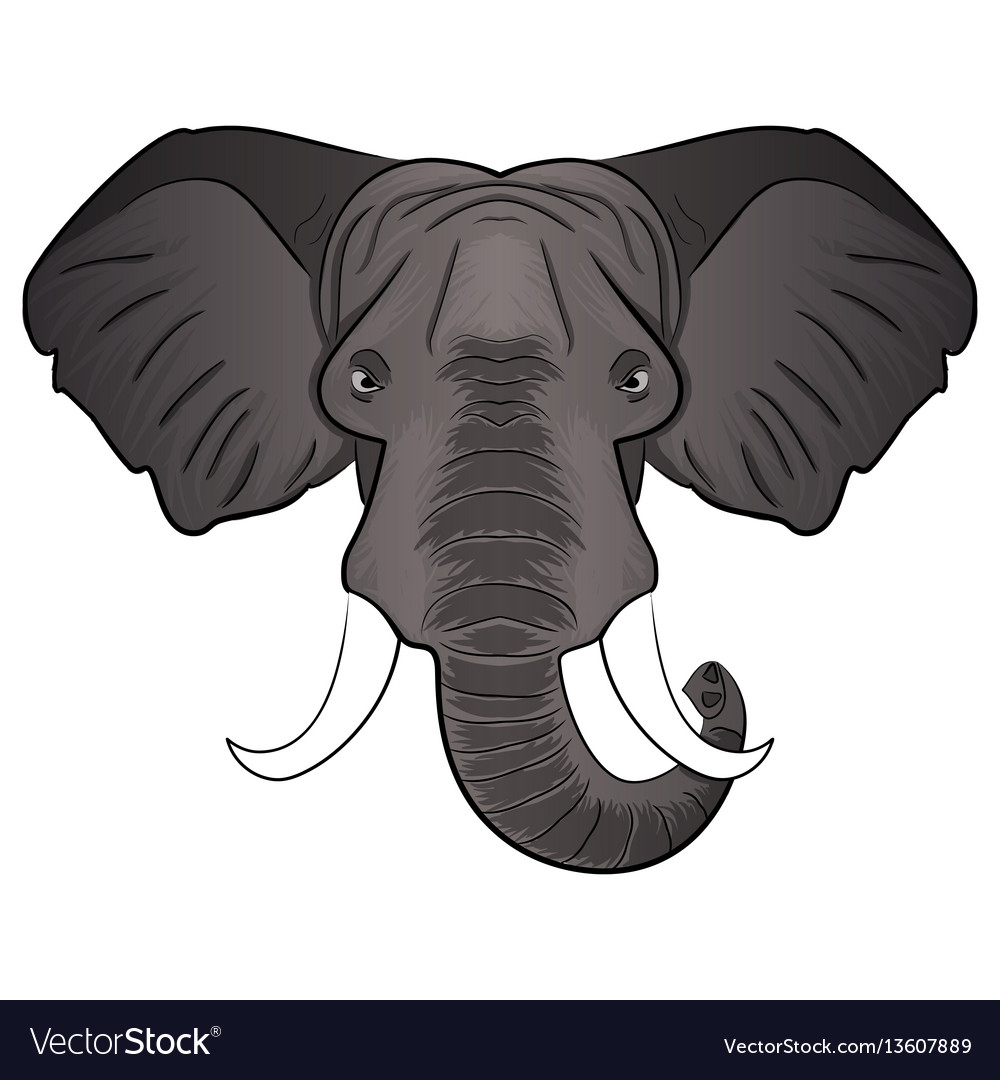 Elephant cartoon head vector image