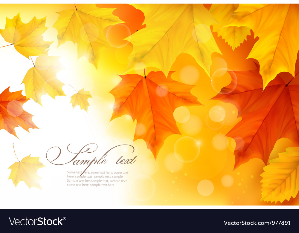 Autumn background with gold and red leaves vector image