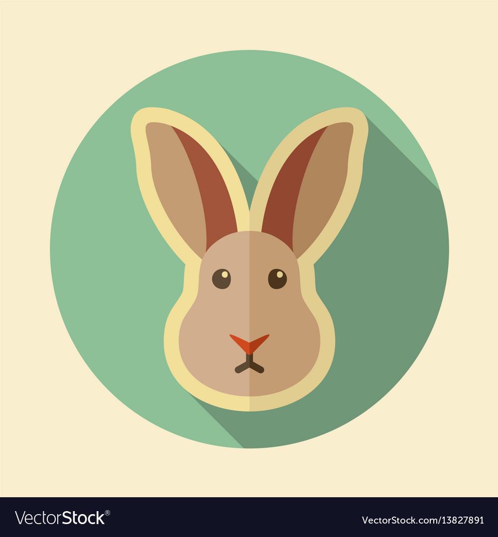 Rabbit flat icon animal head vector image
