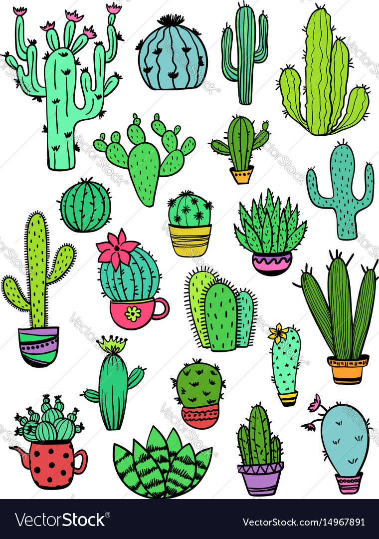 Set of colorful cactus icons vector image