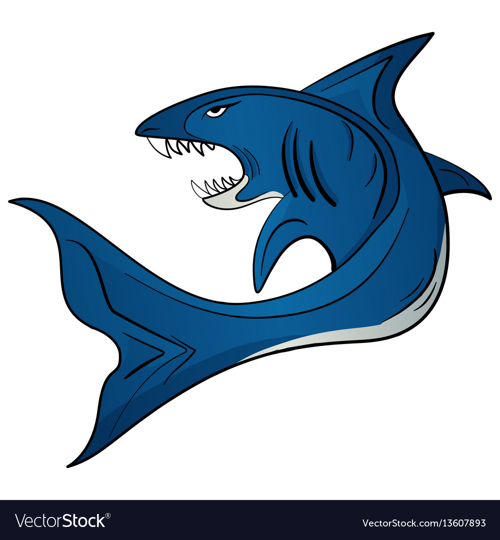 Toothy white shark vector image