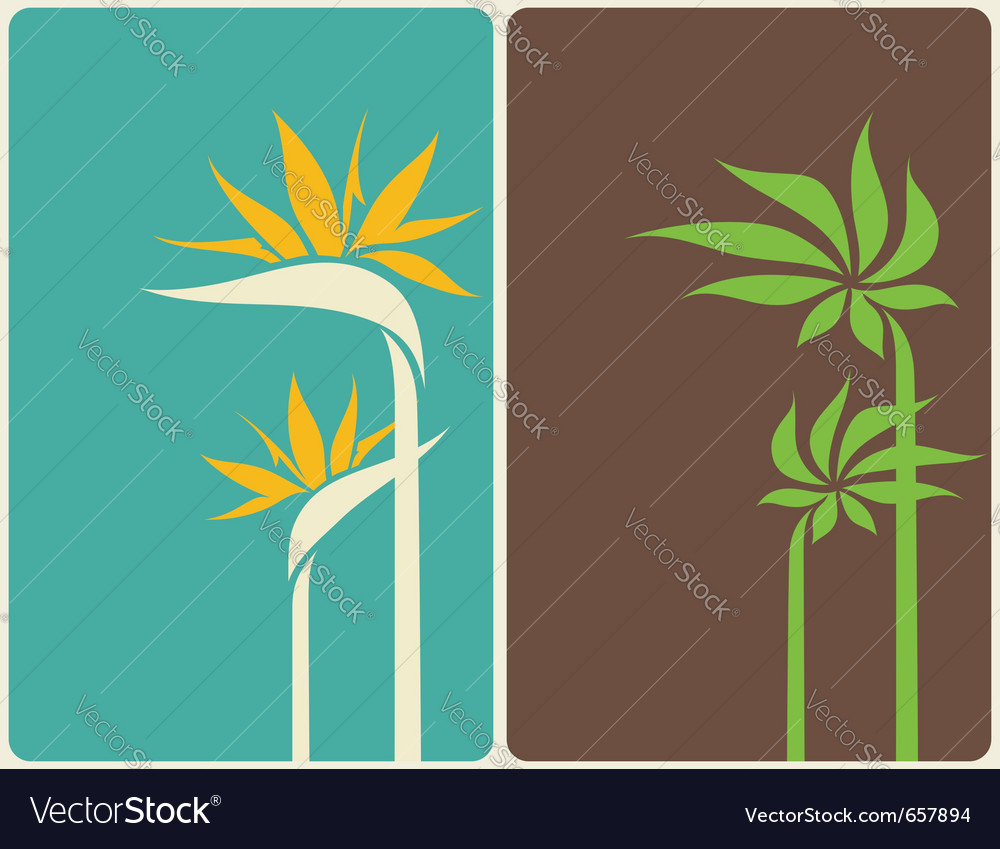 Bird of paradise flower and palm tree leaf vector image