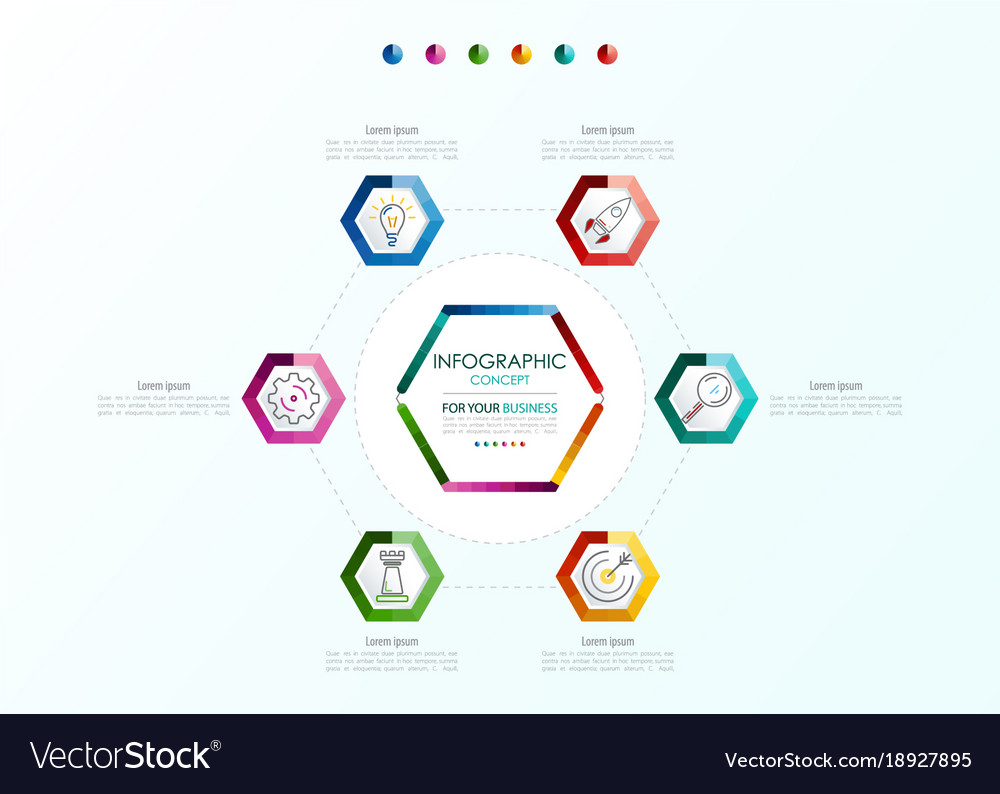 Infographic template business concept with options vector image