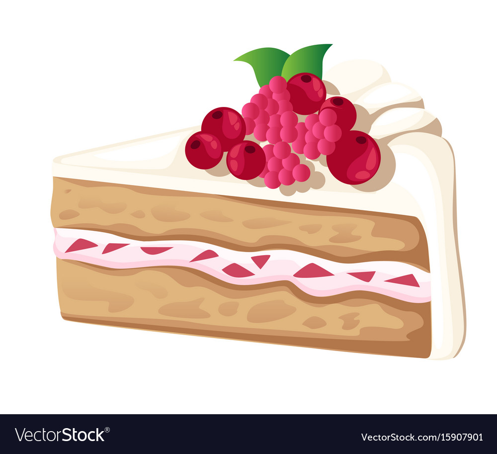 Colorful sweet cakes slices pieces isolated on vector image