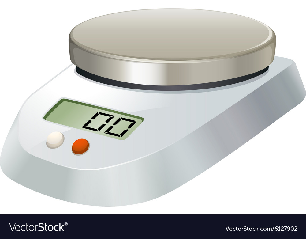Lab scale with metal plate vector image