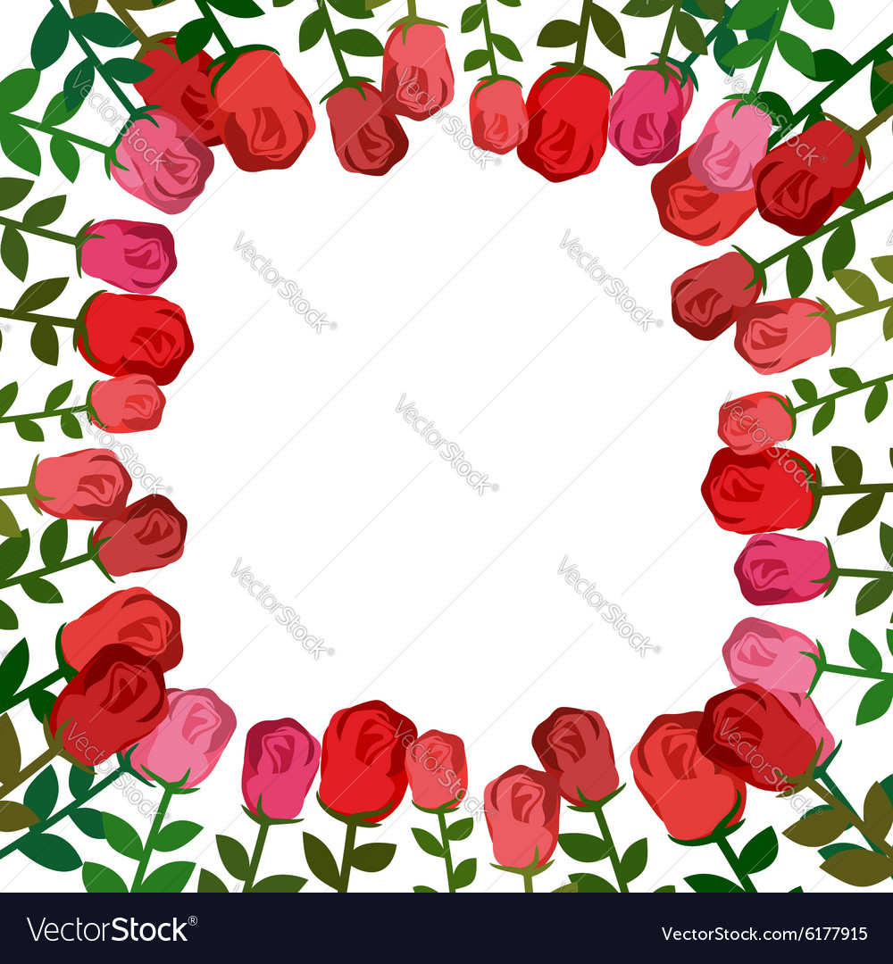 Frame of roses Red background beautiful flowers vector image