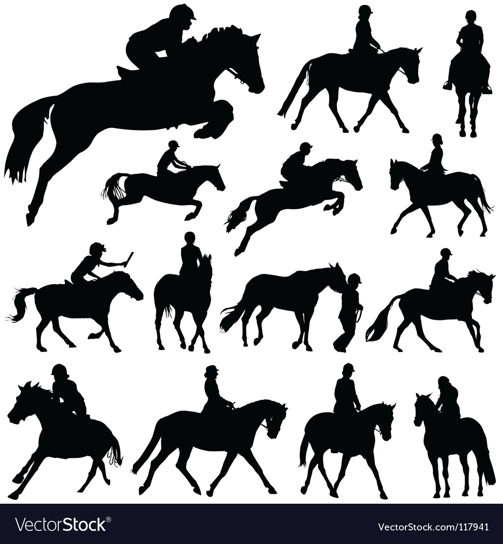Horses and riders vector image