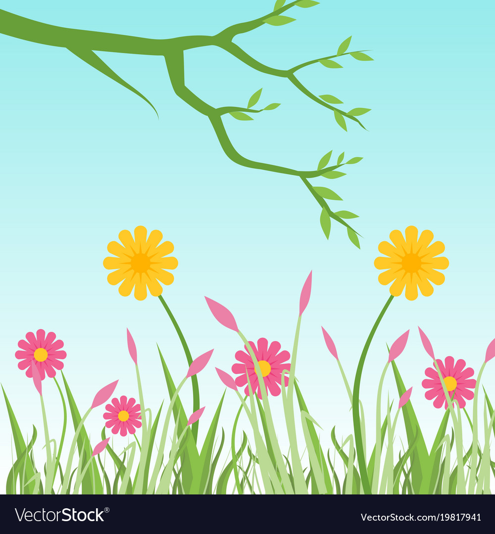 Pink And Yellow Flowers With Branch Of Tree In Vector Image