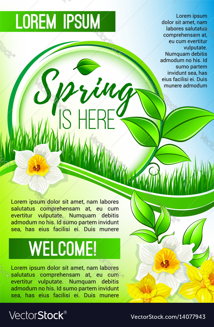 Spring poster greetings of blooming flowers vector image