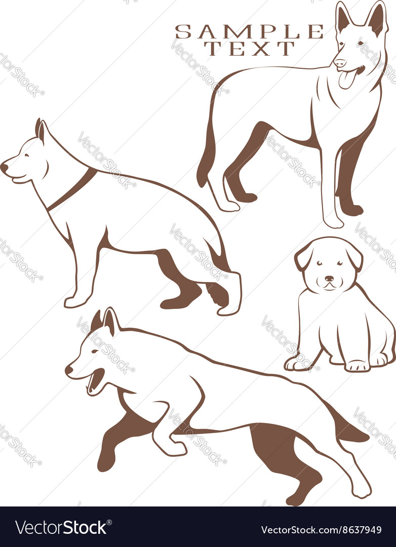 Service Dog Vector Image