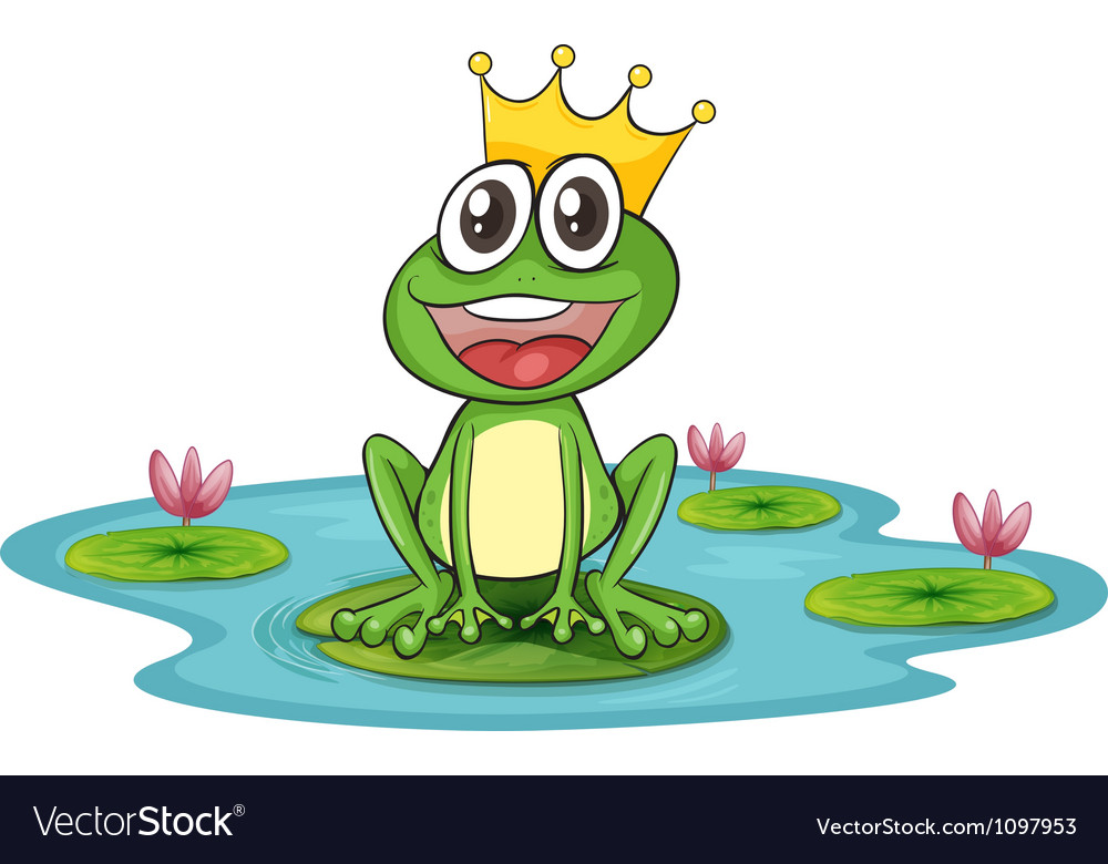 Frog and water vector image