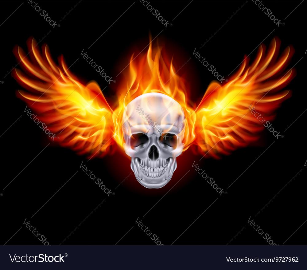 Flaming Chrome metal Skull wings fair 01 vector image