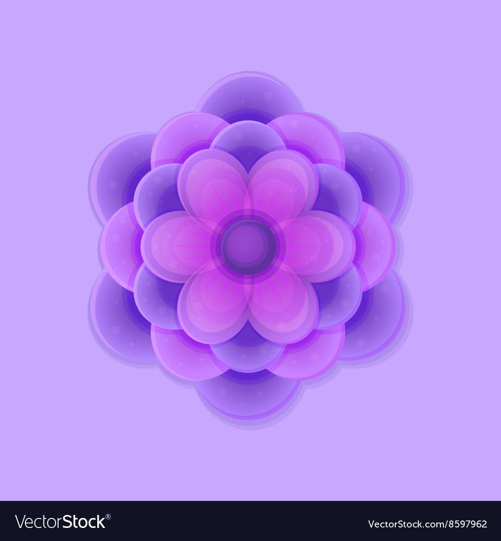 Lilac Purple Flower vector image