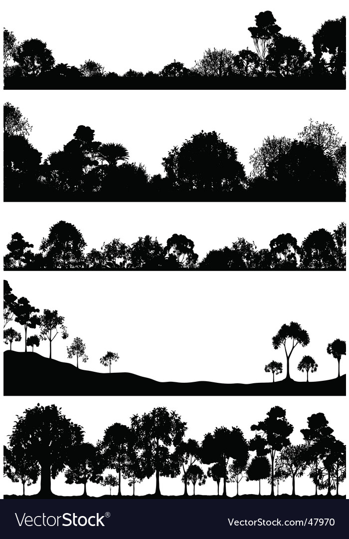 Woodland foregrounds vector image