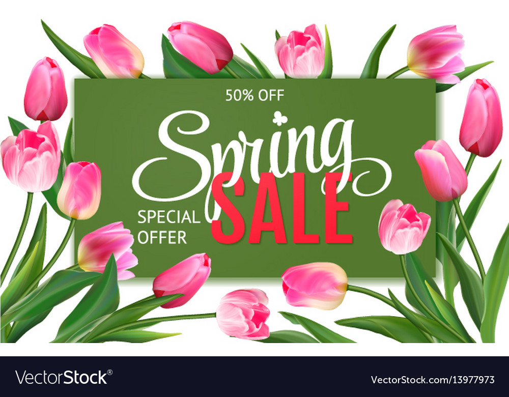 Spring sale banner with pink tulips vector image