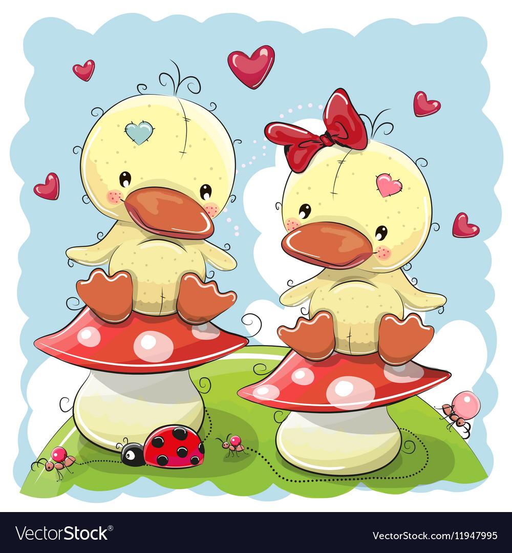 Two Cute Cartoon Ducks vector image