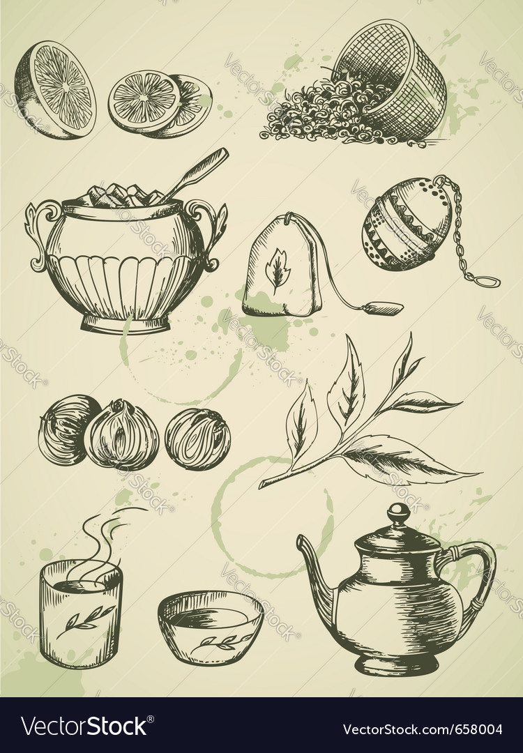 Set of vintage hand drawn tea icons vector image