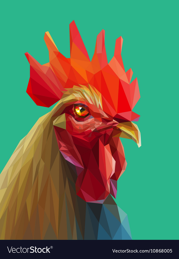 Beautiful colorful and bright polygon rooster vector image