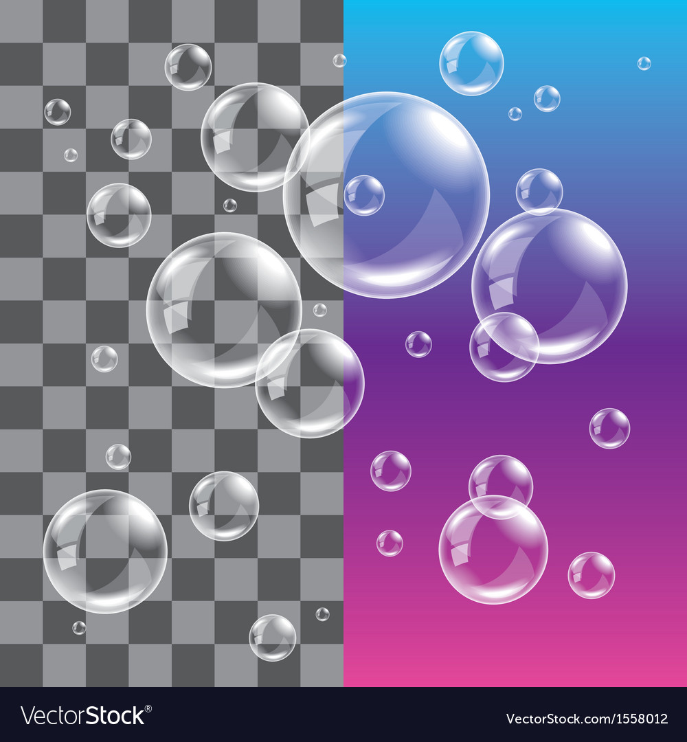 Bubble soap dark vector image