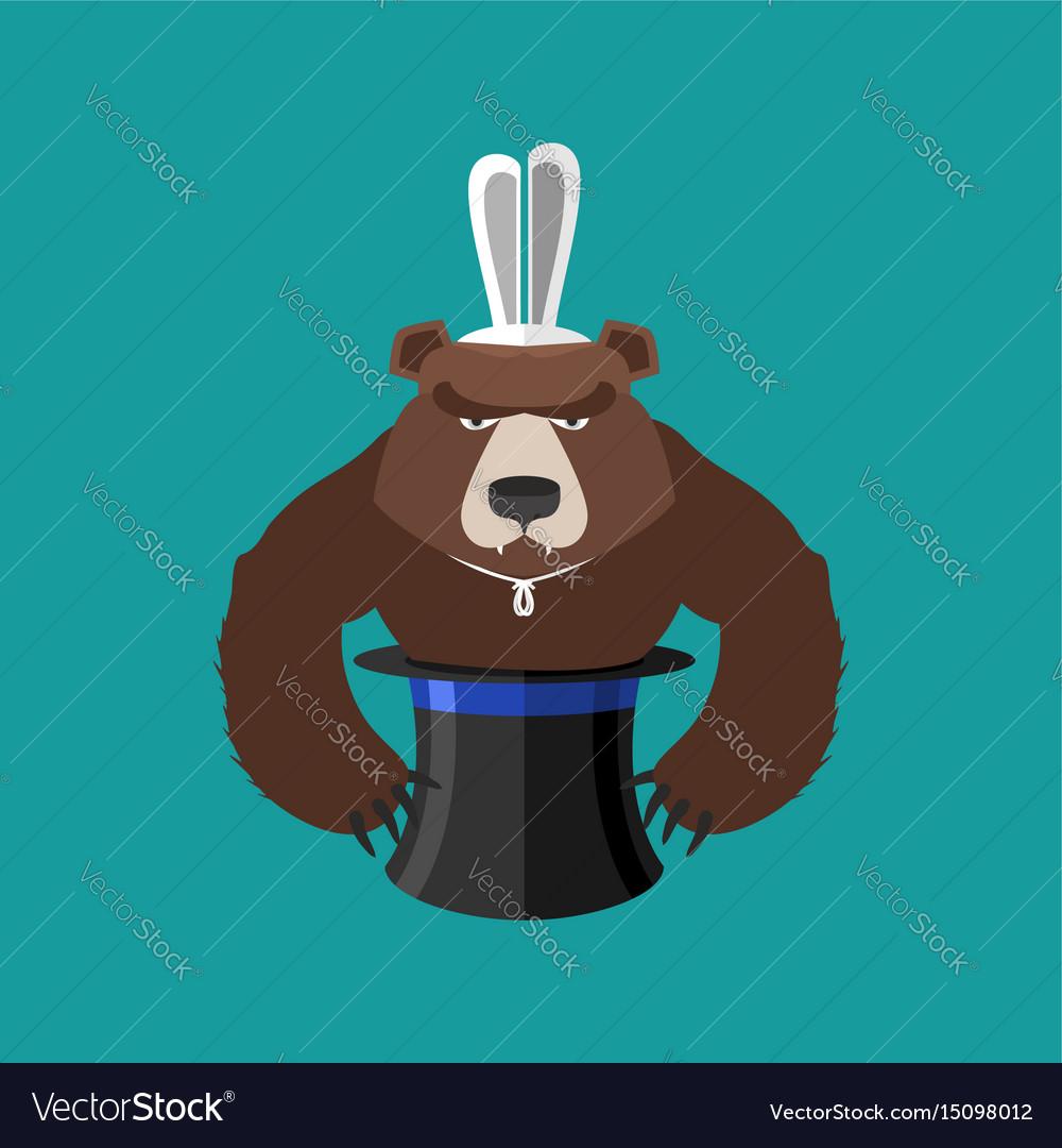 Magical hat and bear magic trick predator vector image