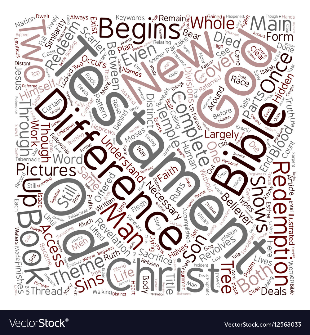 Differences The Old and New Testament text vector image