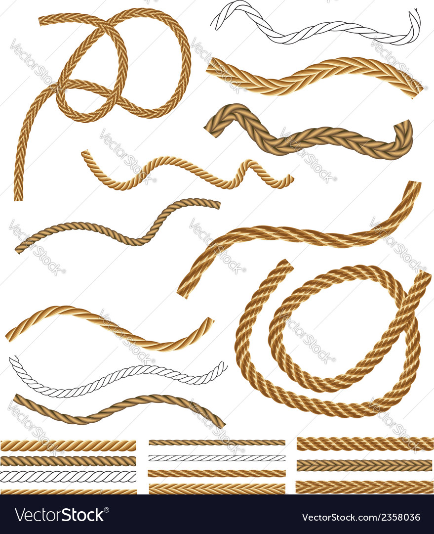 Rope Brushes vector image