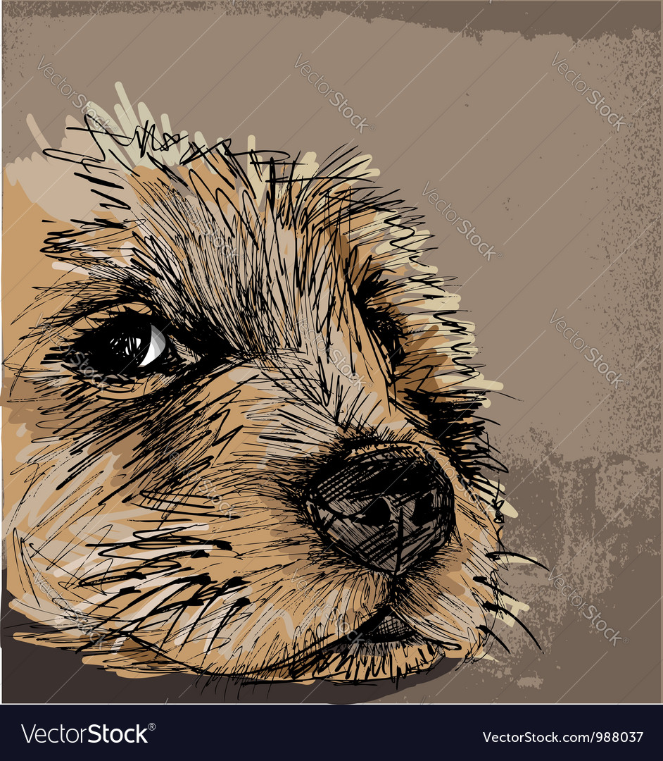 Sketch of a dog vector image