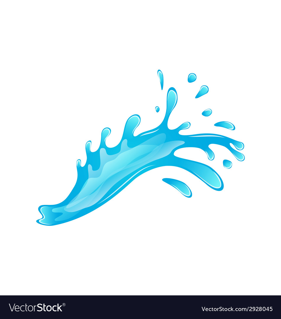 Blue water splash isolated on white background vector image