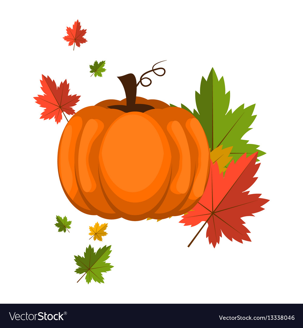 Pumpkin over white background vector image
