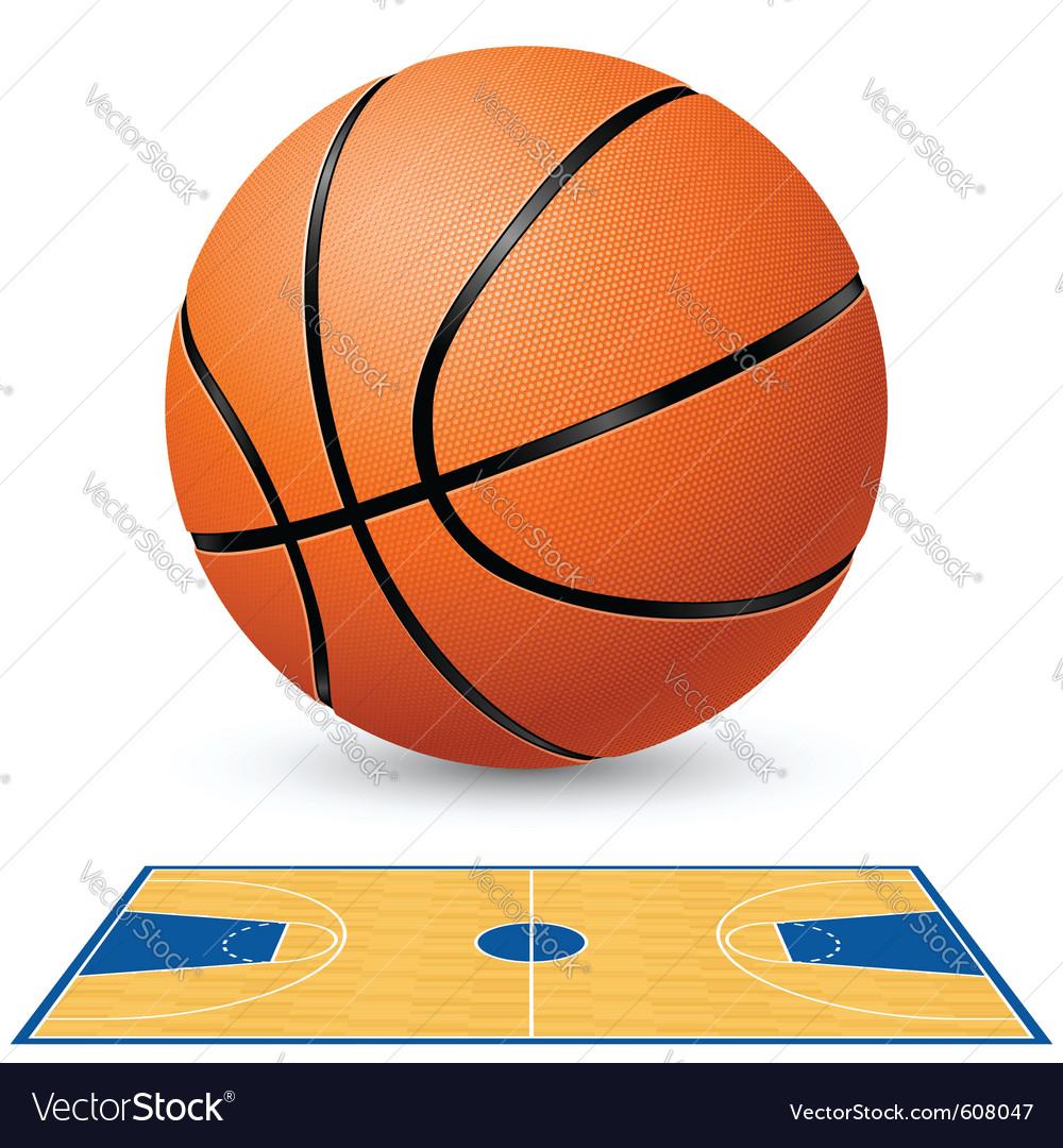 Basketball court floor plan vector image