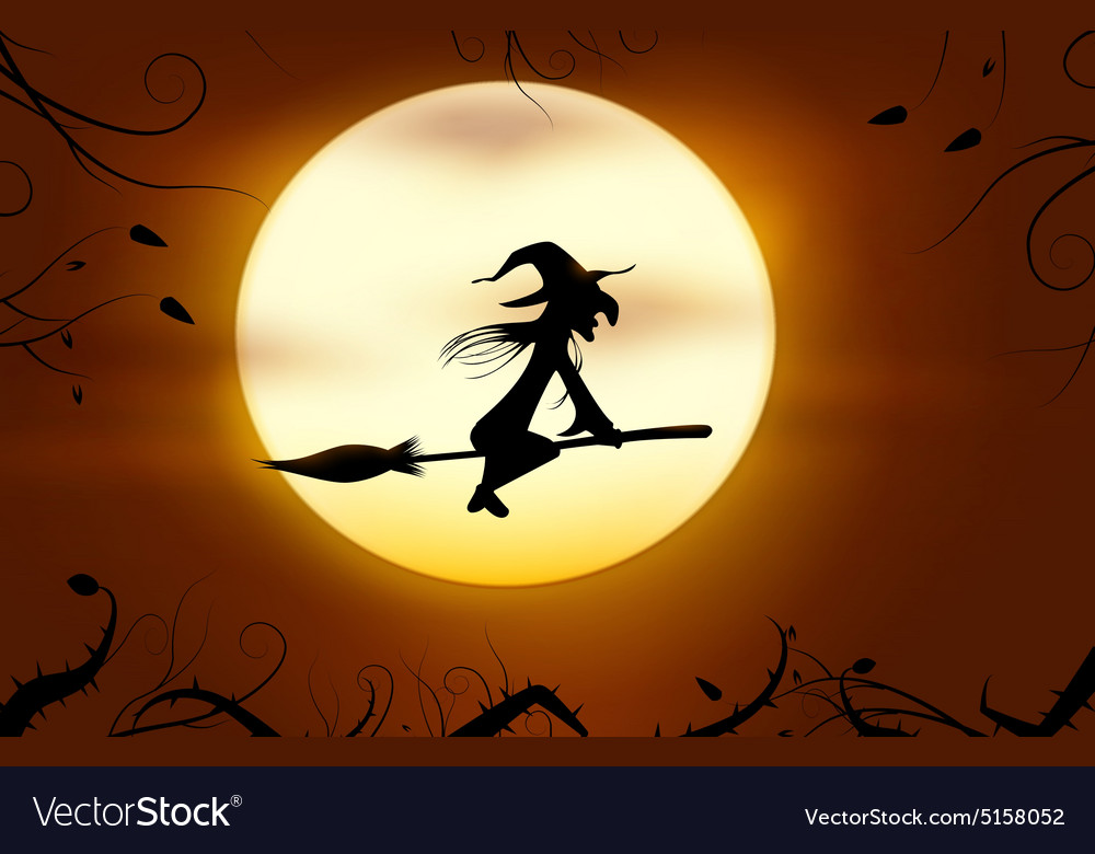 Flying witch vector image