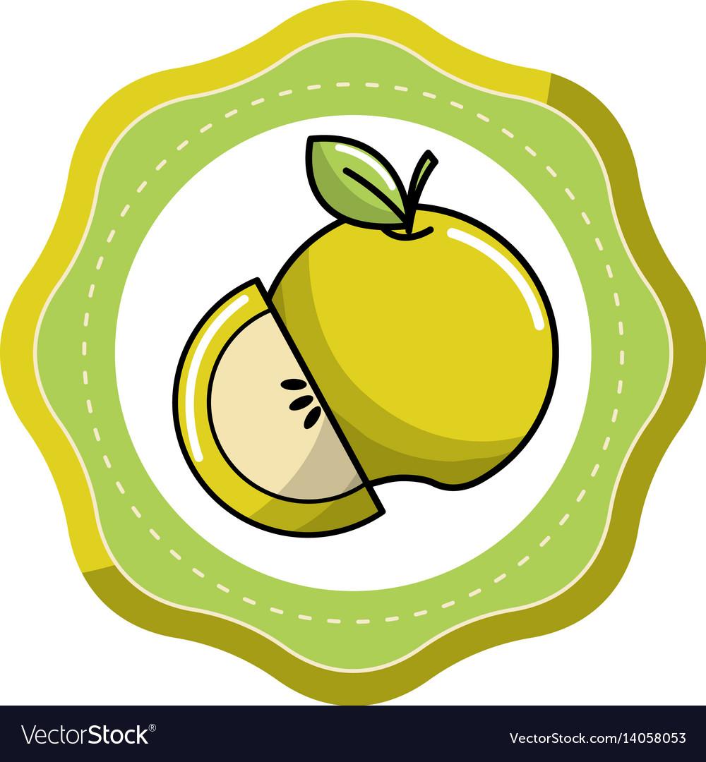 Sticker green apple fruit icon stock vector image