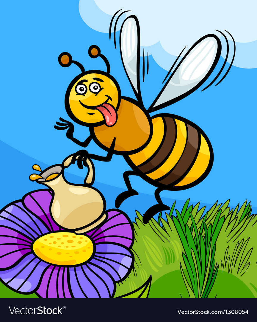 Honey bee insect cartoon vector image